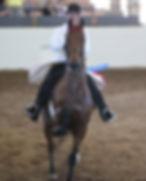 saddle seat horse training