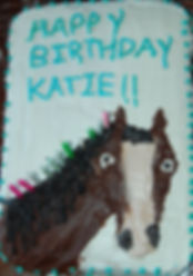 horseback riding birthday party