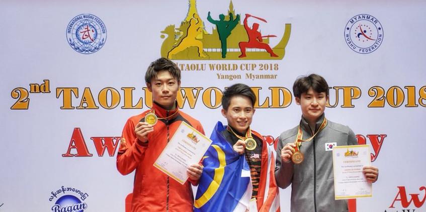2018年W杯 2種目銀メダル