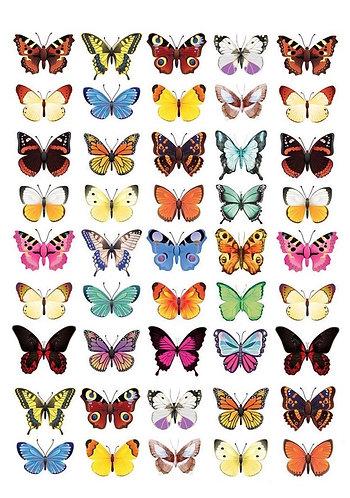 Assorted Butterflies Nail Decals