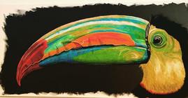 Toucan I