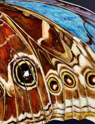 Butterfly Wing 2