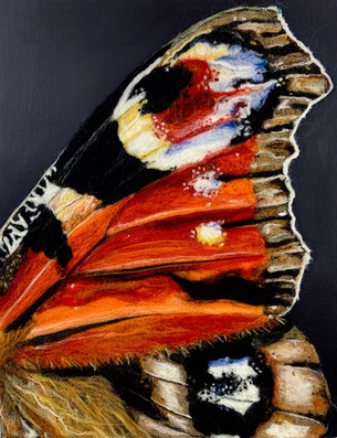 Butterfly Wing I