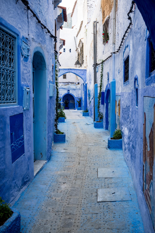 Moroccan Blue-1