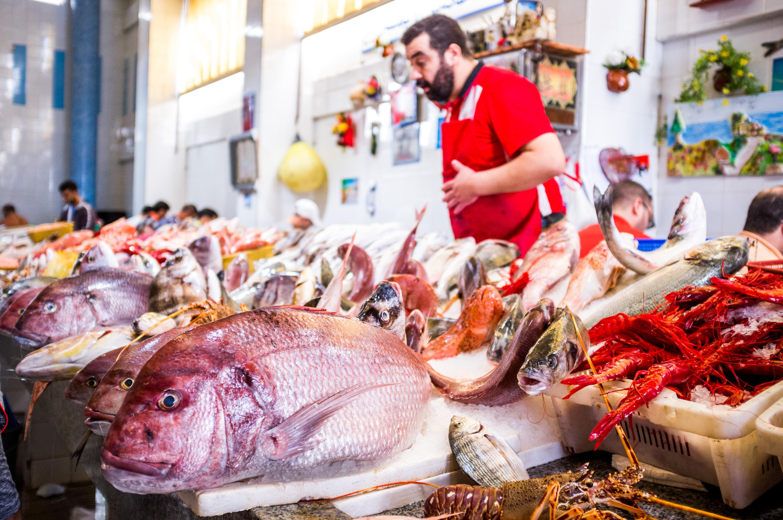 Moroccan Fish-3
