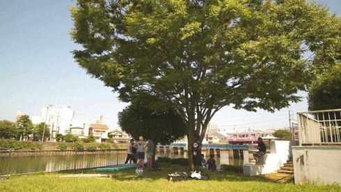 巴川の親水公園