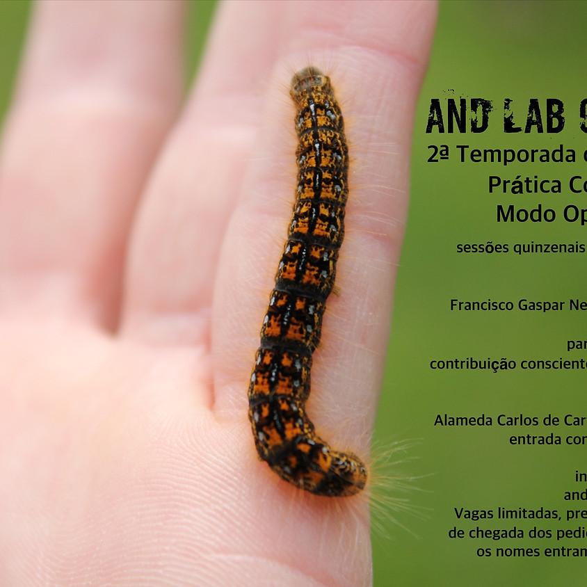 AND Lab Curitiba - Prática Continuada Modo Operativo AND
