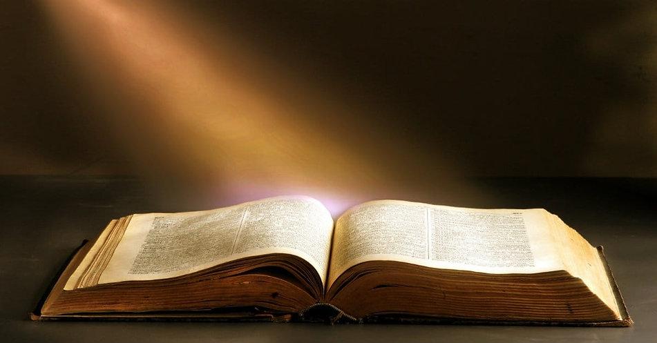 31507-biblewithlight-light-bible.1200w.t