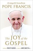 the joy of the gospel.jpg