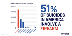 Giffords-Stats-Page-Suicide_edited.png