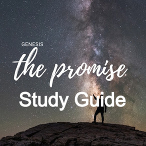 Study Guide - Genesis #13: The Promise - Questions, Faith, & Certainty