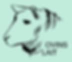 Geneval indexations ovins lait