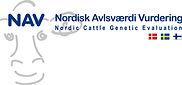 NAV_logo.jpg