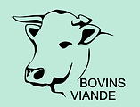 IMAGE BOVINS VIANDE.PNG