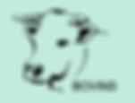 Geneval indexations évaluations bovines