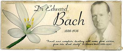 Dr.-Bach.jpg