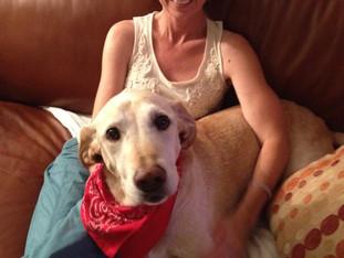 Dog Companions Can Reincarnate