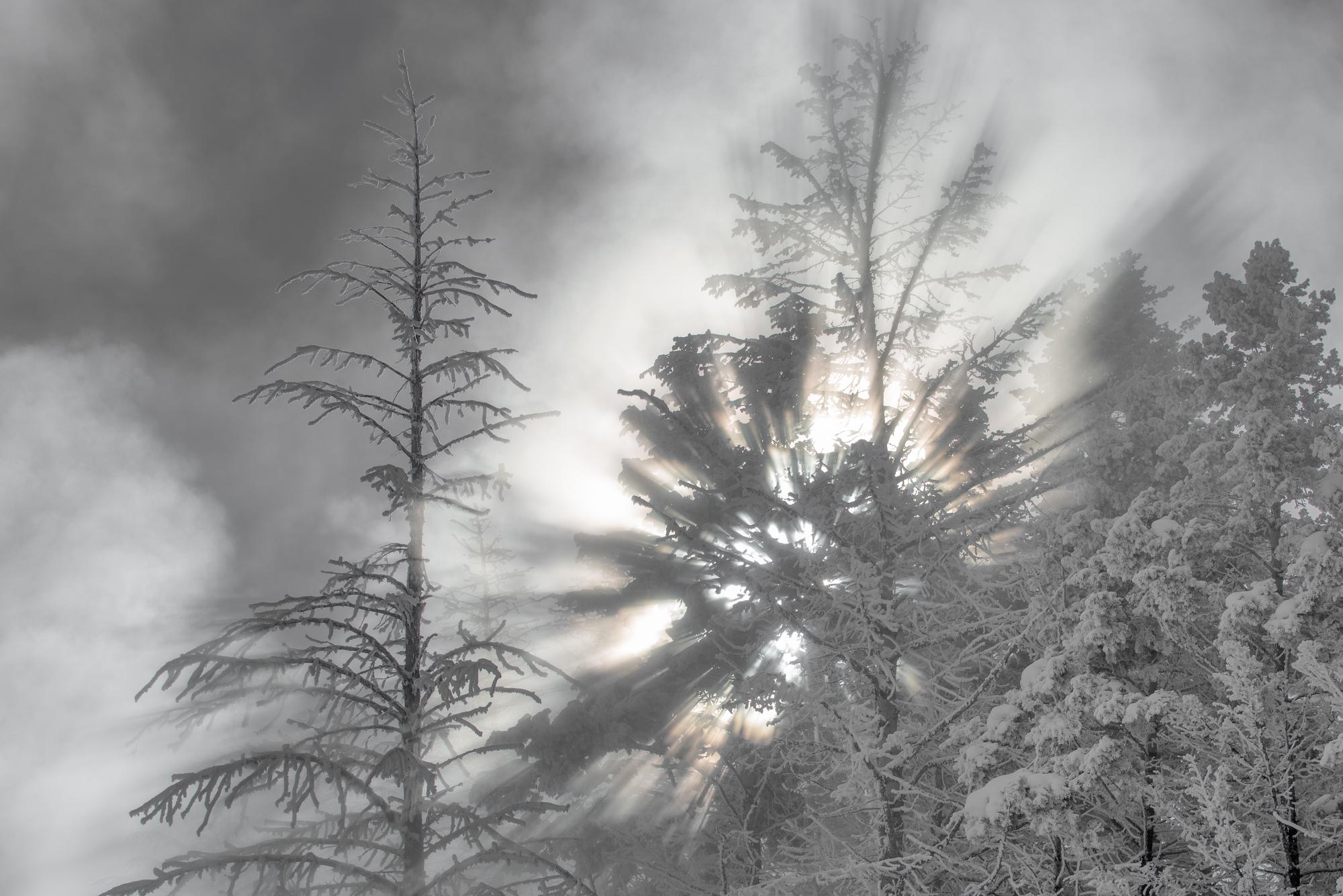 The God rays