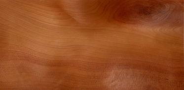 Древесина тиса