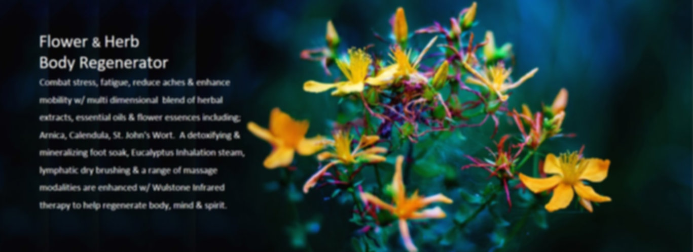 flower%20special_edited.jpg