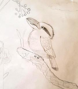 Hunter's Kookaburra