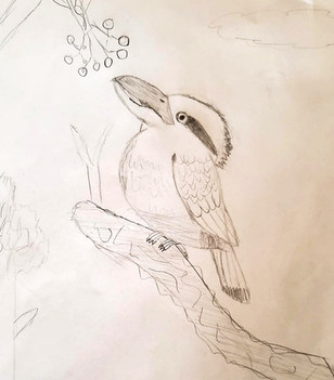 Hunter's Kookaburra