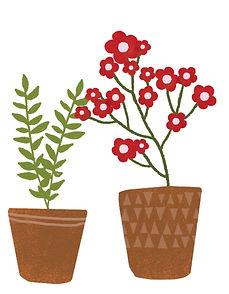 twee potten met plant en bloemenplant.jp