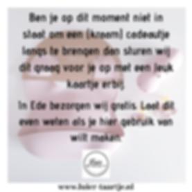 Kinderen LuierTaartje.png