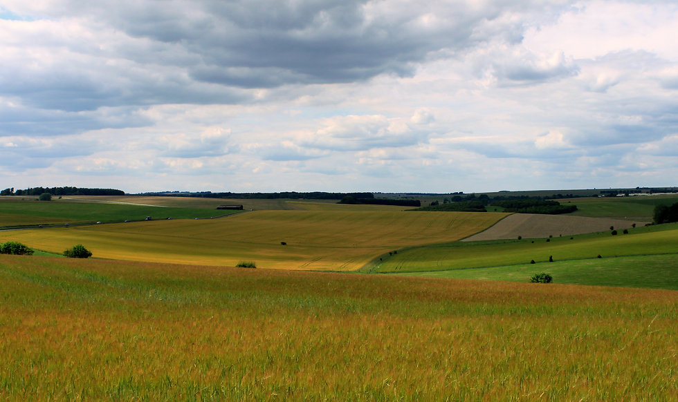 Fields_on_Salisbury_Plain.jpg