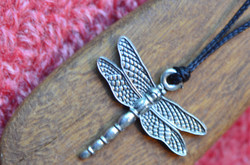dragonflywildwood