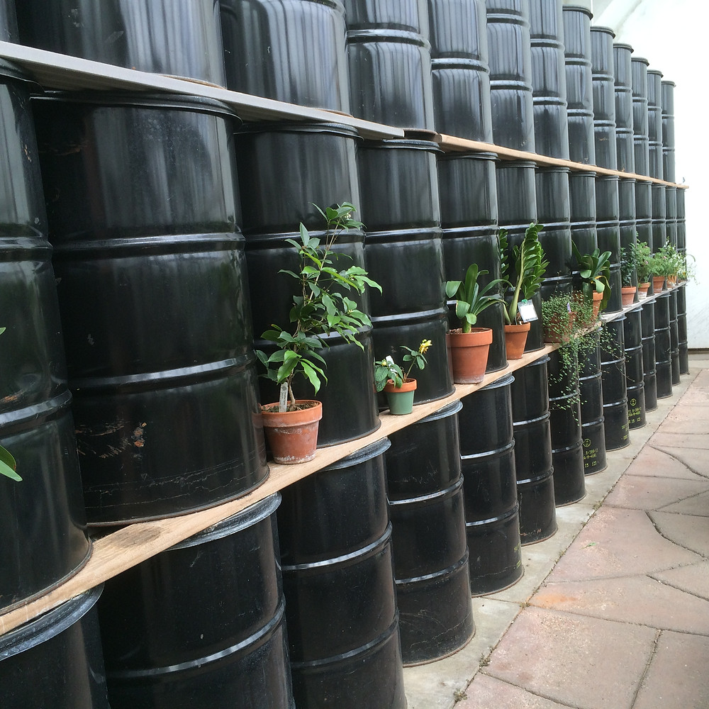 Handicapped people work very hard in the greenhouse to plant thousands of seeds to plant outside in the warm weather!