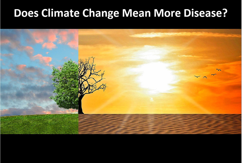 climate change and diseases from bugs