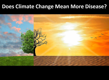 Climate Change and Bug-Borne Diseases