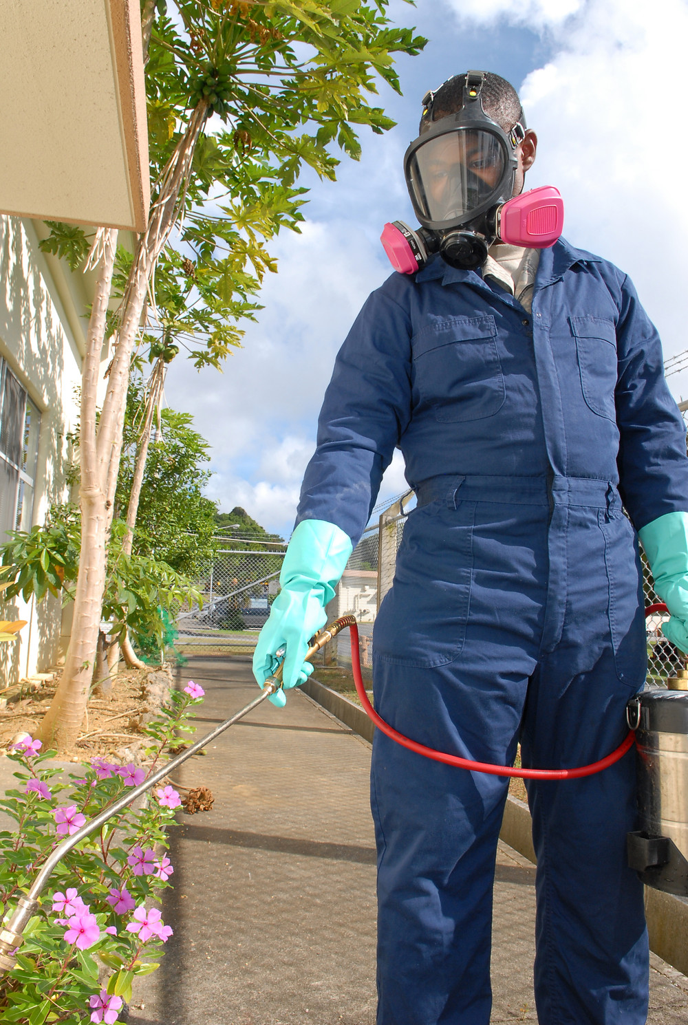 Exterminator bed bug treatment cost