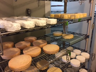 cheese ageing on racks Remedy Wine Bar Vermont