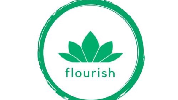 Flourish Career Mentorship
