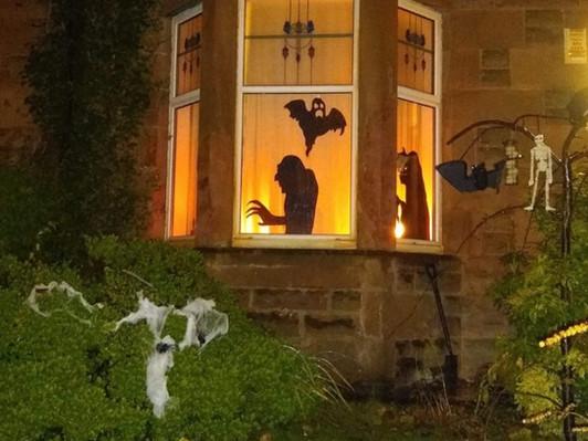 Wicked Waverley Windows