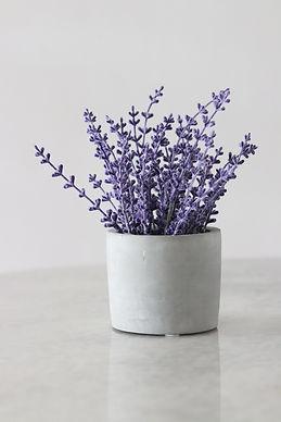 Lavendel-Workshop-Öle.jpg