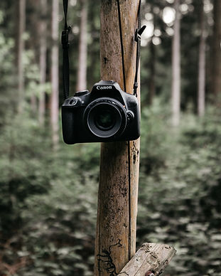 Natur-Photography-Workshop-frea-retreats