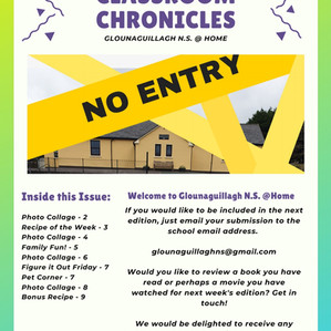 Glounaguillagh N.S. @ Home, Issue 5