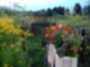 TOMA Biologische bloementeler de BijenAkker
