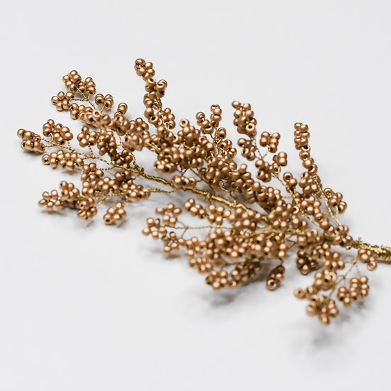 Branche Vera