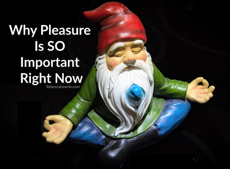 Why Pleasure is SO Important Right Now!