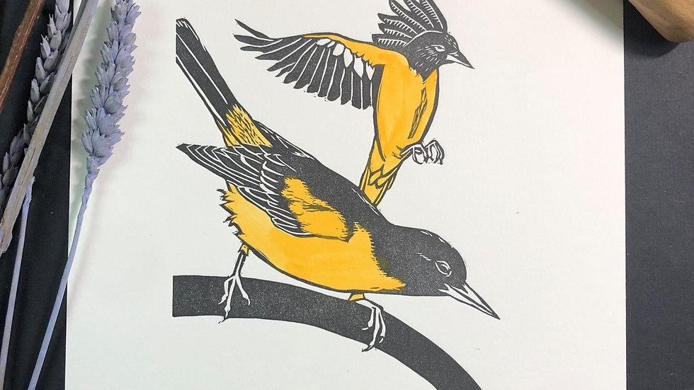 Oriole Relief Print