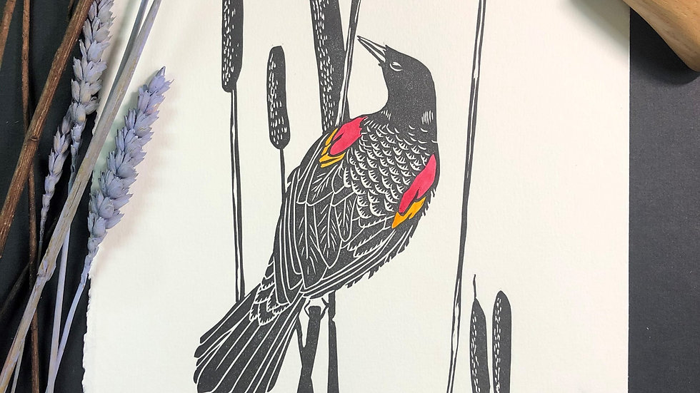 Red Winged Blackbird Relief Print