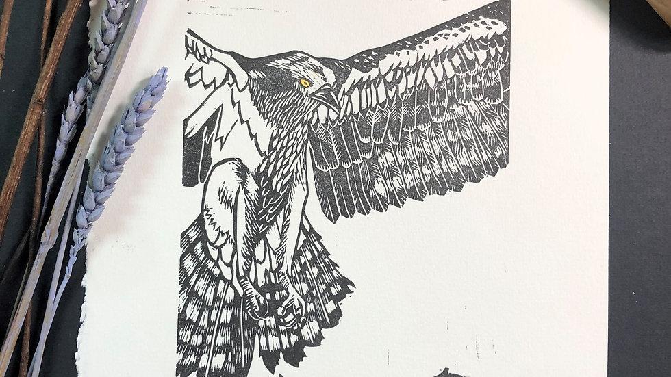 Osprey Relief Print
