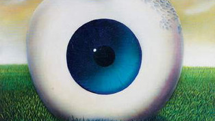 Big Apple is watching you