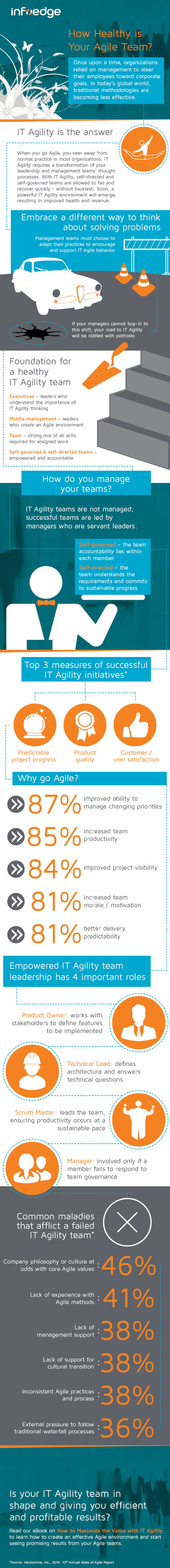 infographic breaking down agility, infoedge LLC management consulting information technology