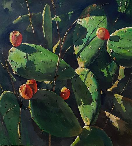 Pomegranates on Vines