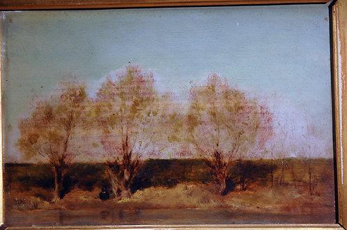Saintresse - 3 Trees